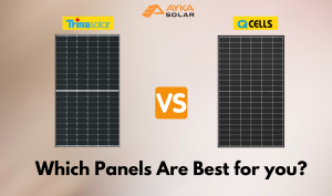Q Cells vs Trina solar panels- Best for you?